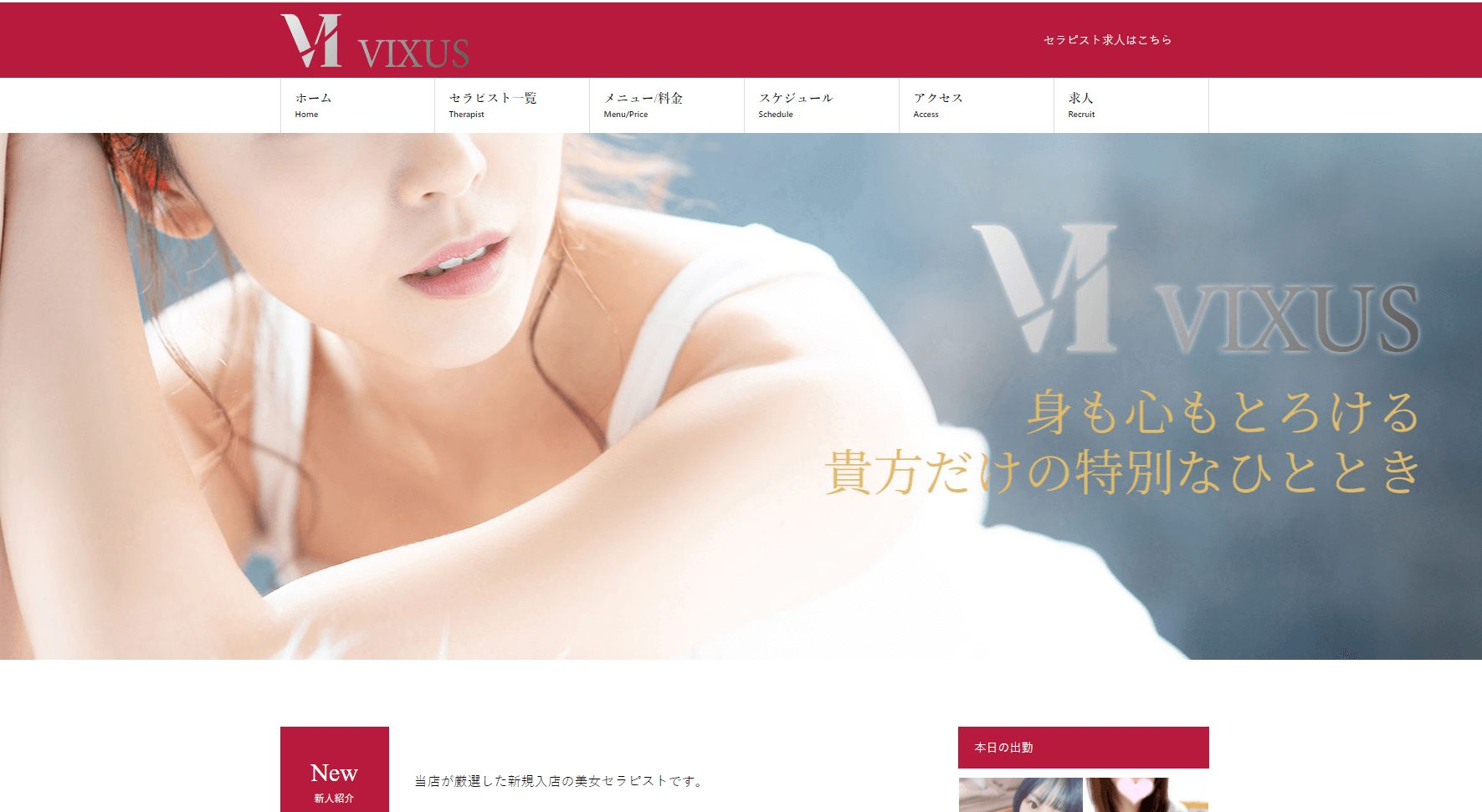 Vixus(ヴィクサス)